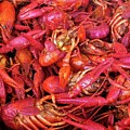 Crawfish Boil by Judith L Schade