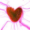 Crazy Love by Linda Sannuti
