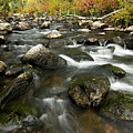Crazy Woman Creek In Autumn by Larry Ricker