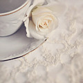 Cream Rose On White China Cup by Lyn Randle