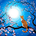 Creamsicle Kitten In Blue Moonlight by Laura Iverson