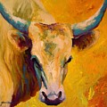 Creamy Texan - Longhorn by Marion Rose