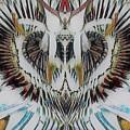 Creative Design by Pauline Dawkins