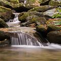 Creek 1 by Joye Ardyn Durham