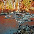 Creek 5  by Joseph F Safin