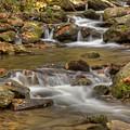 Creek 7 by Joye Ardyn Durham