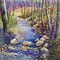 Creek Crossing by Hailey E Herrera