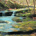 Creek In Dappled Light At Don Robinson State Park 1 by Greg Matchick