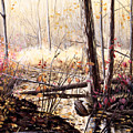 Creek In The Woods by Roger Witmer