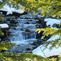Creek by Lisa Spero