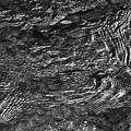 Creek Ripples B And W by Thomas Fields