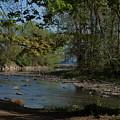 Creek To Lake by Joy Leninsky