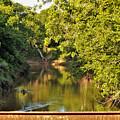 Creek View Through Bridge Trusses by Sheila Brown