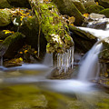 Creek With Icicles by Richard Steinberger
