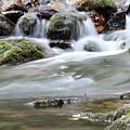 Creek With Rocks Spring Scene by Goce Risteski