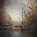 Creekside  by Jill Terry