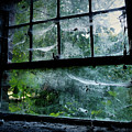 Creepy Old Window by Jarno Holappa
