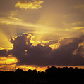 Crepuscular Rays Of Sunlight by Zina Stromberg