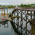 Crescent Harbor by Maxine Kamin