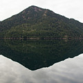Crescent Lake Reflection by Roger Patterson
