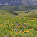 Crested Butte Valley by Meagan Watson
