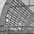 Cricket Stadium Architecture Black And White by Terri Waters