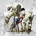 Cricket1 by James Robinson