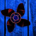 Crimson Blue by David Andersen
