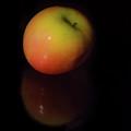 Crisp Apple by Pamela Williams