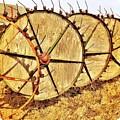 Crop Circles by Joyce Kerr