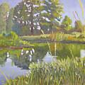 Cross Creek by D T LaVercombe