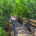 Cross Over The Bridge - Sedona Arizona by Jon Berghoff