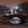 Crossing Gapstow Bridge by Sam Oppenheim