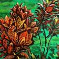 Crotons 5 by Usha Shantharam
