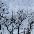 Crow Counting  by D A Diggs