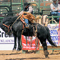 Crow Hopping Saddle Bronc by Cheryl Poland