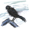 Crow In The Wind by Kevin Callahan