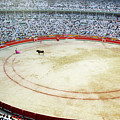 Crowds Watching A Bullfight During The July San Firmin Fiesta In Pamplona by Sami Sarkis