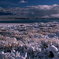 Crowley Lake by Soli Deo Gloria Wilderness And Wildlife Photography