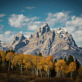 Crown For Tetons by Edgars Erglis
