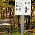 Crown Hill Road 1885 by Jeelan Clark