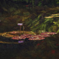 Crown Jewel by Tim Wemple