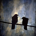 Crows And Sky by Carol Leigh