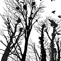 Crows Roost 1 - Black And White by Philip Openshaw