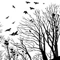 Crows Roost 2 - Black And White by Philip Openshaw