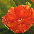 Cruces Bloom by Teresa Lynn Johnson