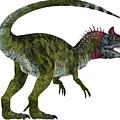 Cryolophosaurus Dinosaur Tail by Corey Ford