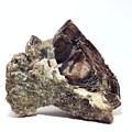Crystal 2 by Andy Klamar