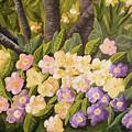 Crystal's Primroses by Lahoma Nally-Kaye