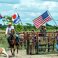 Cuban Cowboys by Lou Novick
